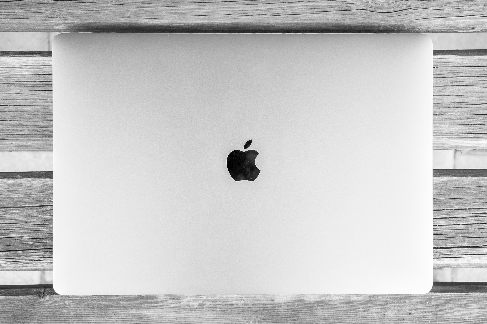 Apple branding on laptop