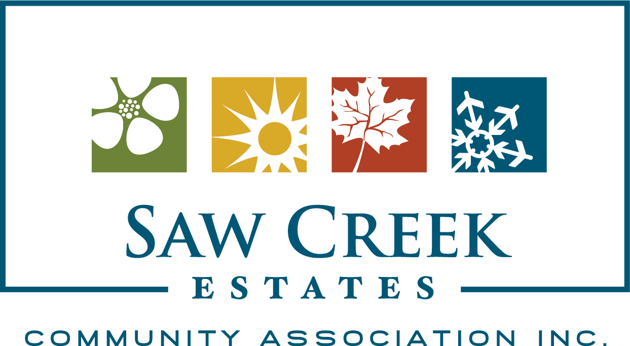 Saw Creek Logo