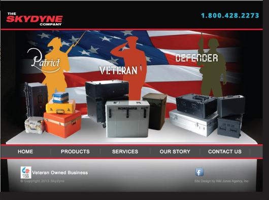 Skydyne website